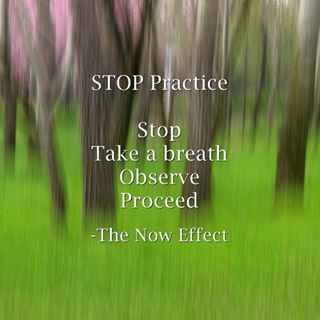 S.T.O.P practice